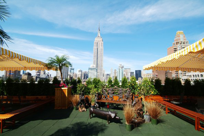 Lush Rooftop Bars That Feel Like An Escape From The City