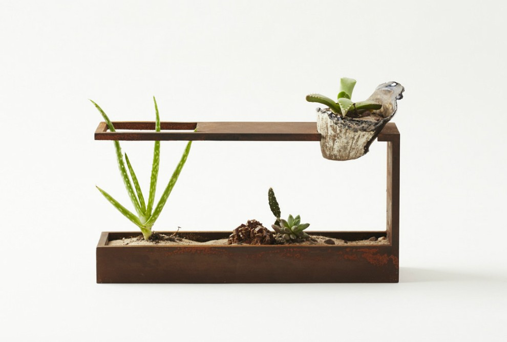 Garden In Glass Container