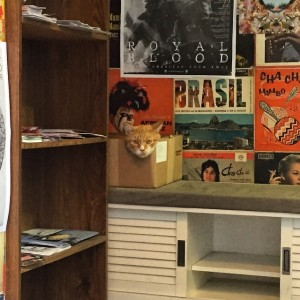 Sneak peek at tomorrow's #newyorkerspotlight feature with Bleecker Street Records…