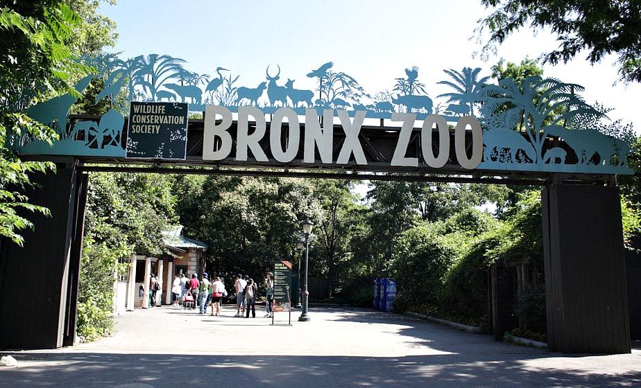 Bronx Zoo, Wildlife Conservation Society