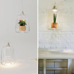 Lightovo, Milo lamp, glass lampshade, Polish design, LED light, small green house, potted flowers,
