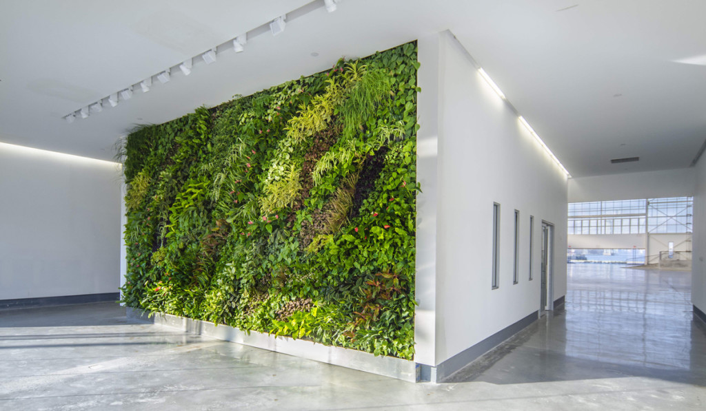 Living Wall, Green Wall, PlantWallDesign, Duggal Greenhouse, Brooklyn Navy Yard
