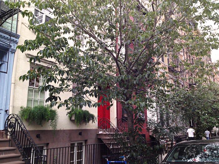 East 7th Street, East Village, Alphabet City, NYC