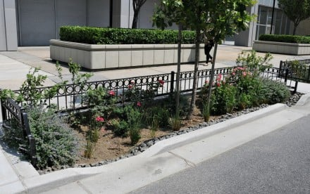 Bioswale, NYC Department of Environmental Protection, NYC green infrastructure