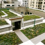Regis High School, green roof, Greensulate, green roof