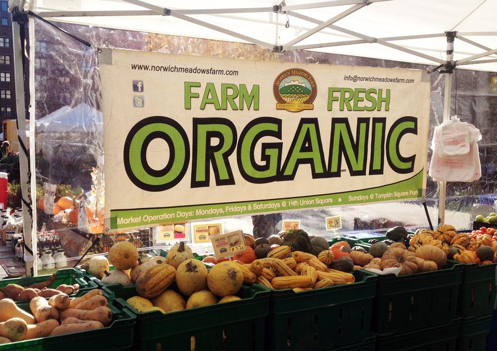 Norwich Meadows Farm, Union Square Greenmarket, Tompkins Square Greenmarket, Zaid Kurdieh, nyc greenmarket, where to get local produce, where to get organic produce, high tunnels, turkeys