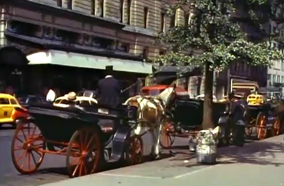 Horse Drawn Carriage 1700s Horse Drawn Carriages at