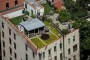 Lucky Family Lives in a Cabin with a Meadow…on the Roof of Their West Village Building