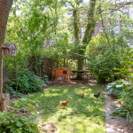 42 Downing Street, Nadine Adamson, summer rental, private backyard