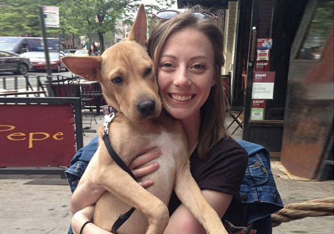 fospice foster dogs nyc