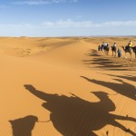 Morocco photography, camels in the desert, Ira Block, National Geographic