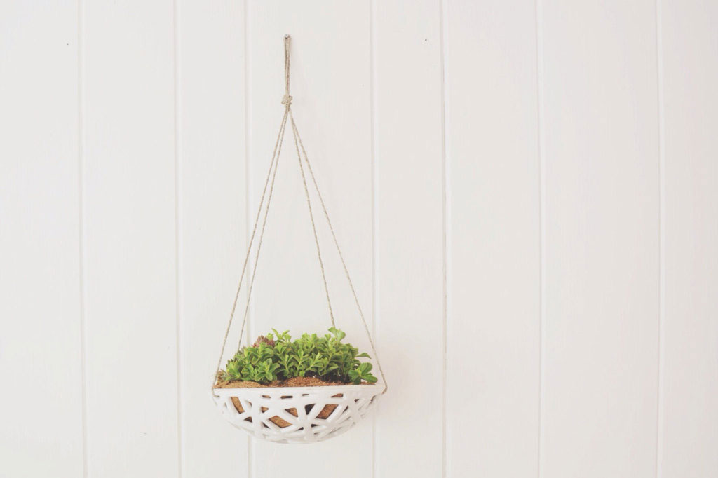 hanging planter, Chantell Stiritz, Convivial Production, home decor