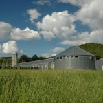 charlotte valley farm, barns