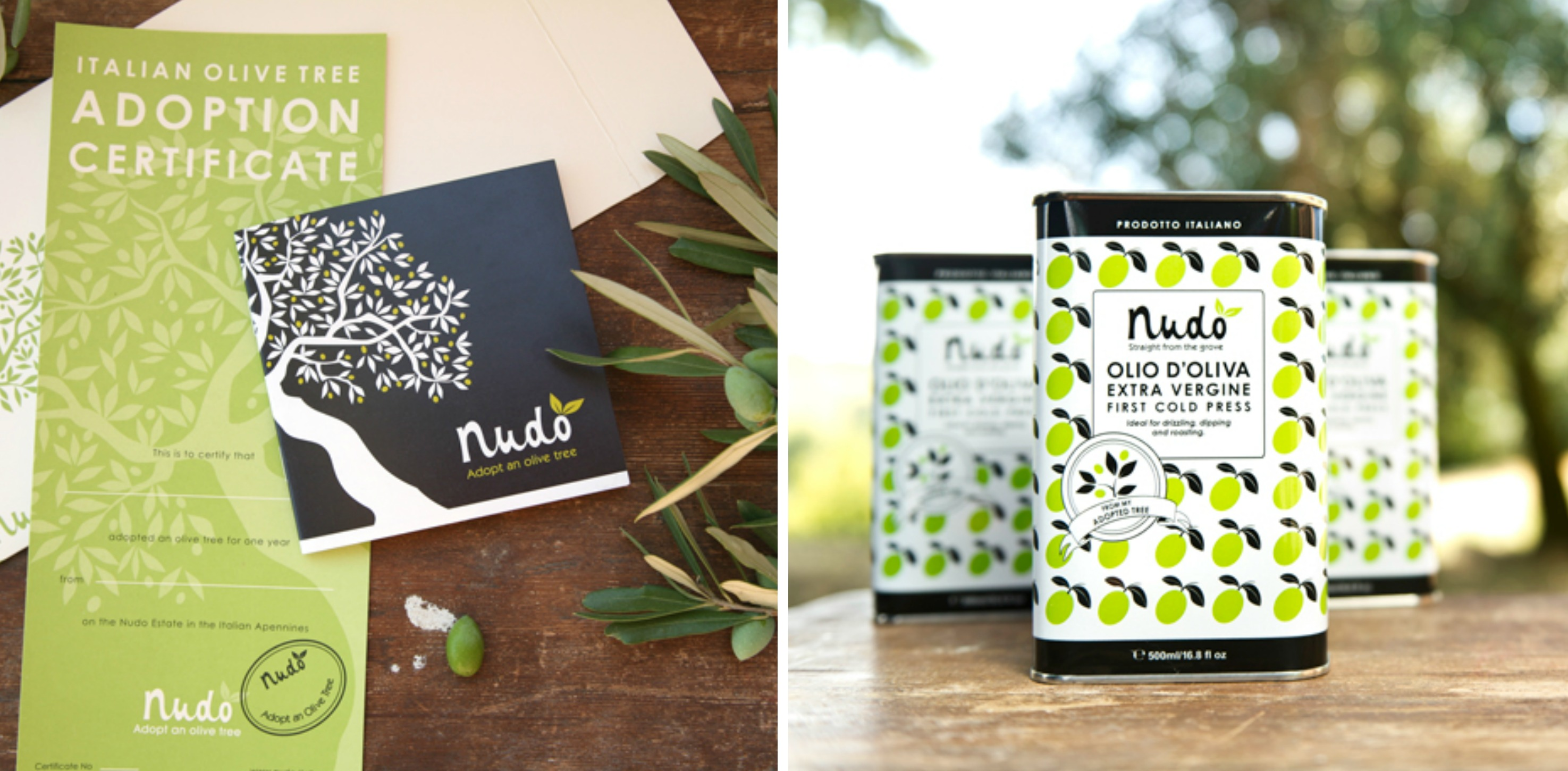 Nudo olive oil, adopt an olive tree