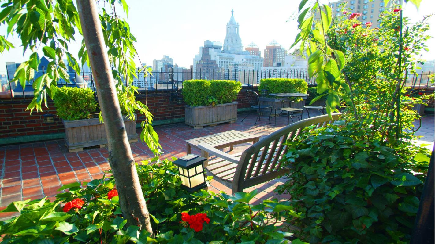 242 East 19th Street, roofdeck, co-op, views, landscaped terrace