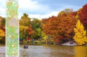 Where to find fall foliage in Central Park