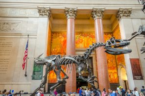 8 things you may not know about the American Museum of Natural History