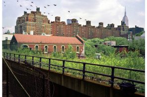 PHOTOS: See an abandoned High Line before its days as a public park