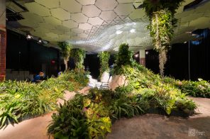 The Lowline goes into 'dormancy' as funds dry up
