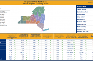 7 of 10 New York regions have met reopening metrics
