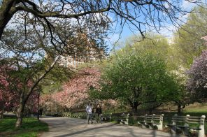 $348M restoration of Riverside Park is part of largest investment in 90 years